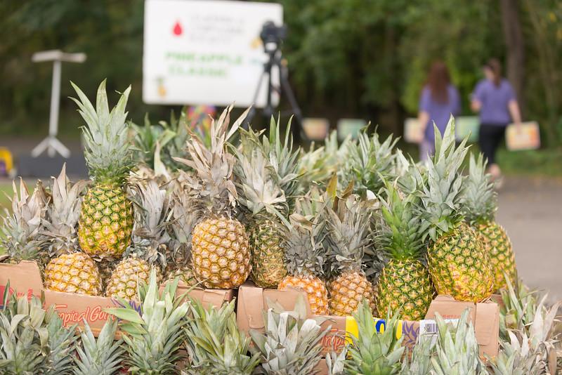 Pineapple5k17-GW-1596.jpg