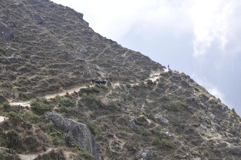 080517 2789 Nepal - Everest Region - 7 days 120 kms trek to 5000 meters _E _I ~R ~L.JPG