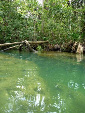 Chassahowitzka River