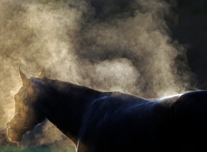 . Steam rises of a horse names Strike the Note as it is washed after a morning workout at Churchill Downs Tuesday, April 30, 2013, in Louisville, Ky. (AP Photo/David Goldman)