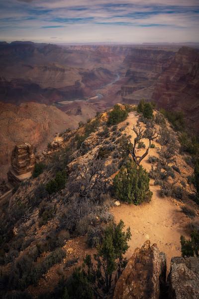 Meandering in the Desert || Navajo Point