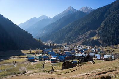 Kashmir (Pahalgam Aru) Nov 2012