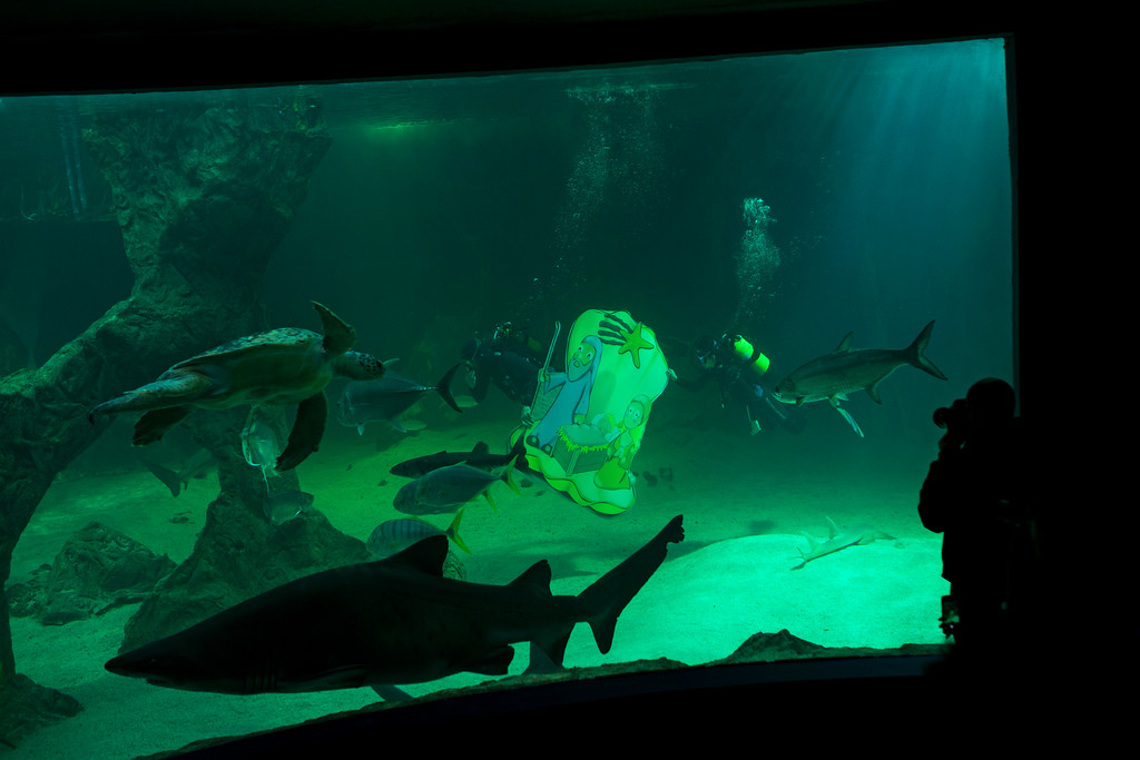 . Divers place figures of a Christmas nativity scene inside the main tank of the aquarium at the Zoo in Madrid, Wednesday, Dec. 13, 2017. Every year the zoo\'s aquarium is decorated with Christmas figures. (AP Photo/Francisco Seco)