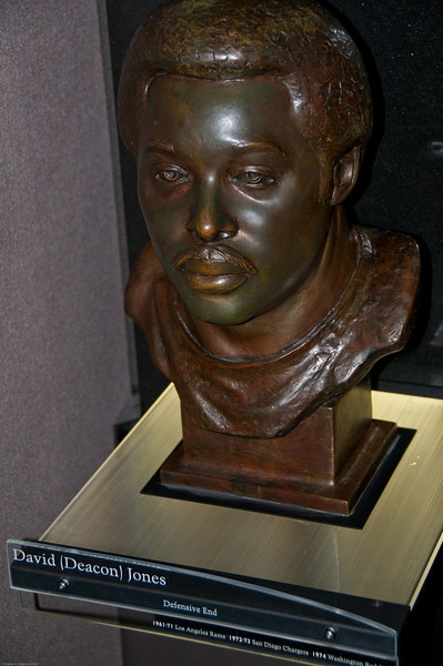 Sports-Football-NFL Hall of Fame 042509-36