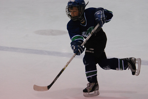 Logan Hockey Vancouver Select