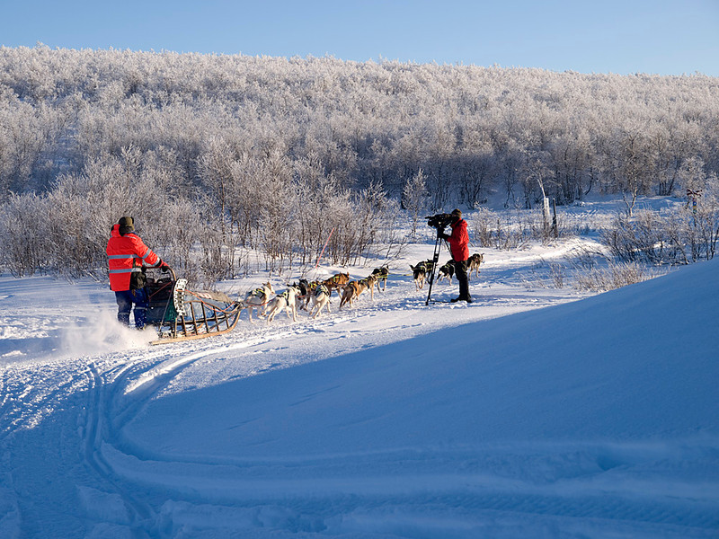 Al filming dog sled running through camp.