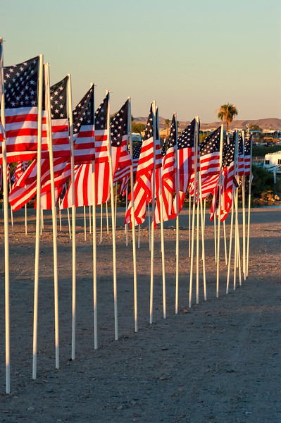 Patriot Days Traveling Wall Lake Havasu 2010