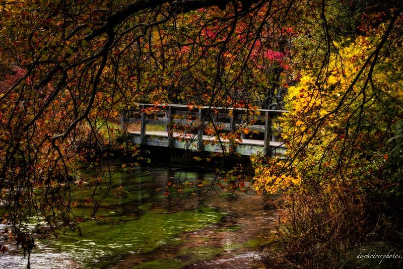 A Little Bridge Over A Stream.jpg
