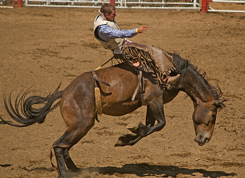 COOMBS RODEO-2009-3531A.jpg