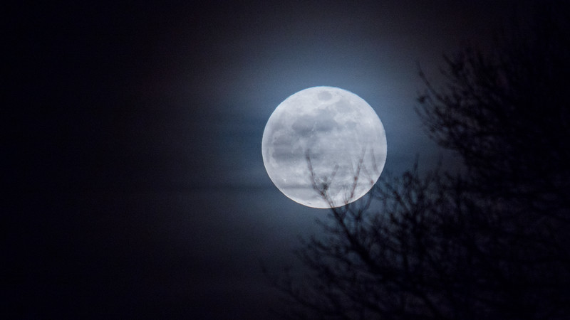 blue moon (1 of 1).jpg