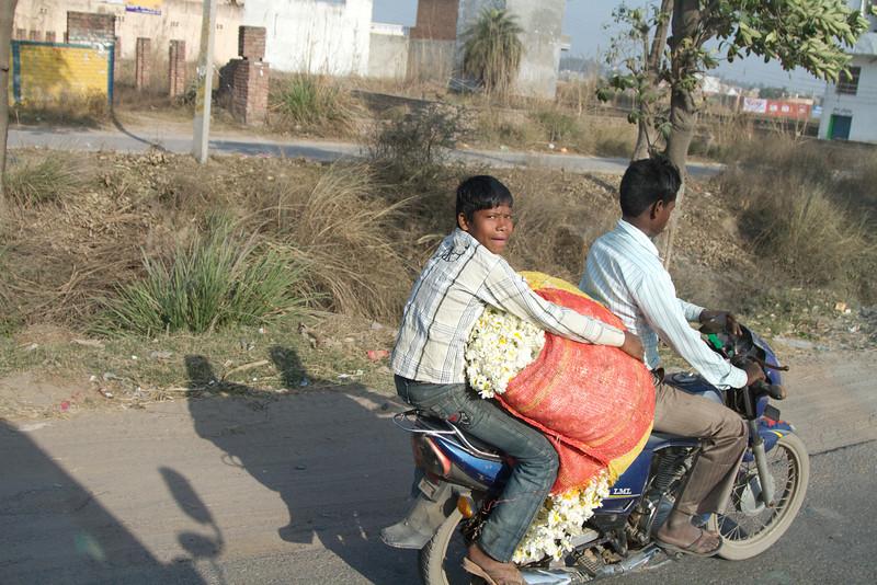 India_2012Feb-5560.jpg