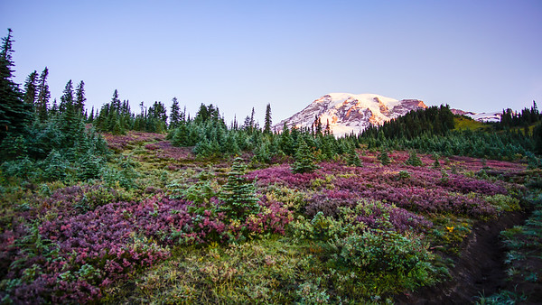 North Cascades and Mount Rainier National Parks