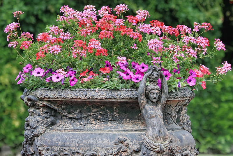 Rose Garden, Schönbrunn Palace, Vienna