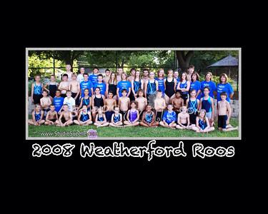 2008 Swim Season