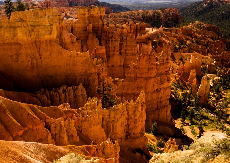 Bryce Canyon National Park 5.jpg