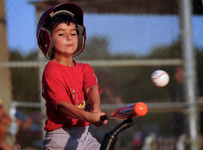 T-Ball: Cardinals vs. Brewers