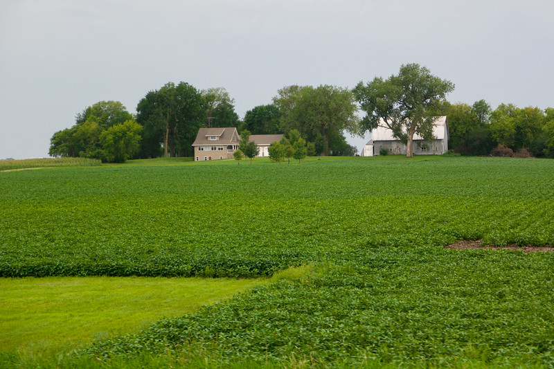 Southern Minnesota Farm