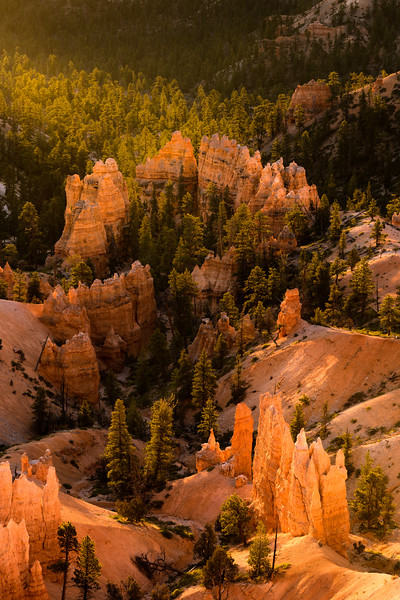UTAH - BRYCE CANYON SUNRISE POINT-0276.jpg
