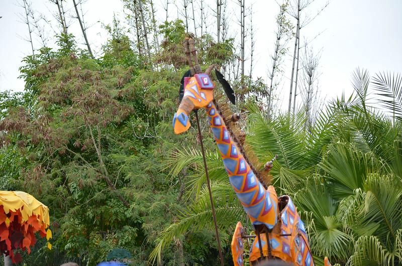 Disney Animal Park March, 2013-DSC_0609-133.jpg