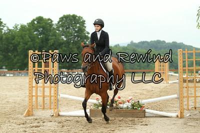 Ring II: Beginner Rider Equitation