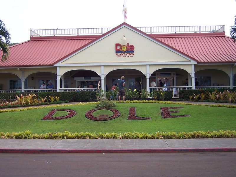 On to the Dole plantation for some pineapples....yum!