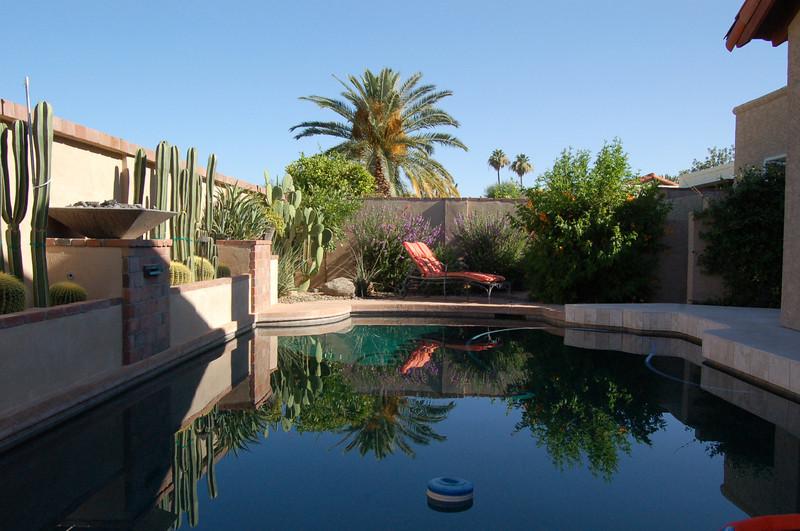 20120607_Scottsdale Back Yard_018.JPG
