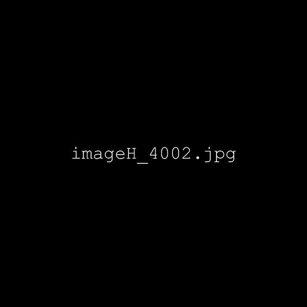imageH_4002.jpg