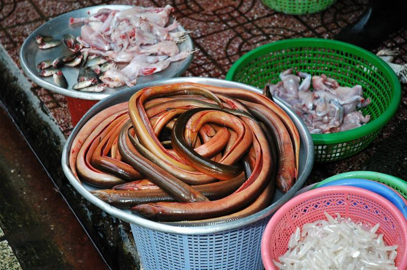 Vietnam 2008-006.jpg