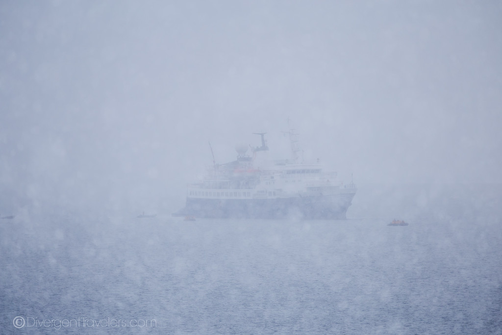 Going to Antarctica - Lina Stock