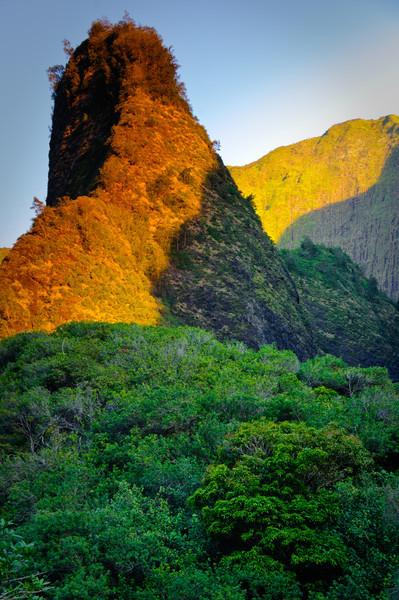 Maui-18.jpg