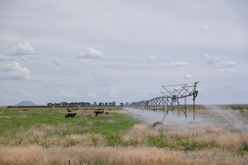 Eastern, ID Irrigation