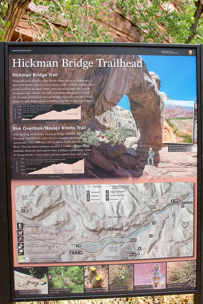 HickmanBridge2018jbc-7.jpg