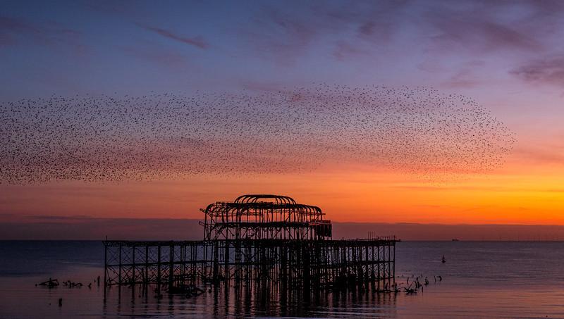 171117_Brighton Beach_Sunset_0134.jpg