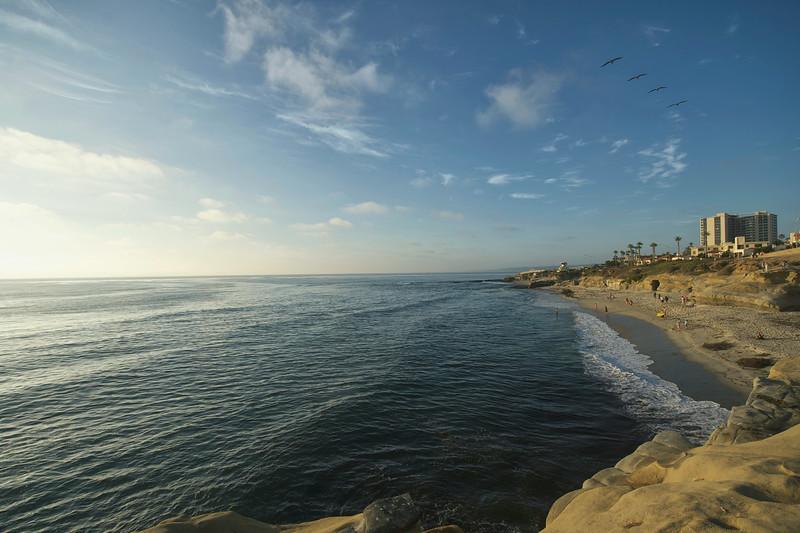La Jolla Cove with Birds