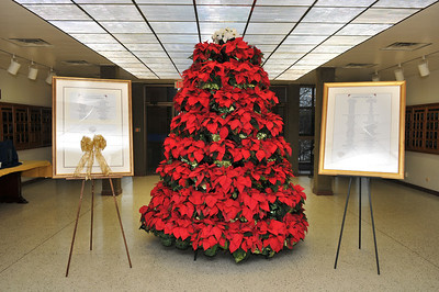 Poinsettia Tree Reception