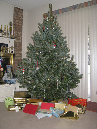 Christmas  2008, Bellevue WA