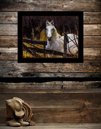 Horse Framed Mockups