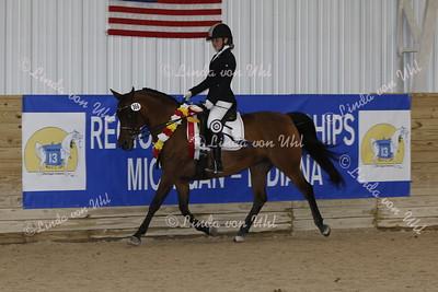 920A R13 Arabian SHUS Mares & Stallions