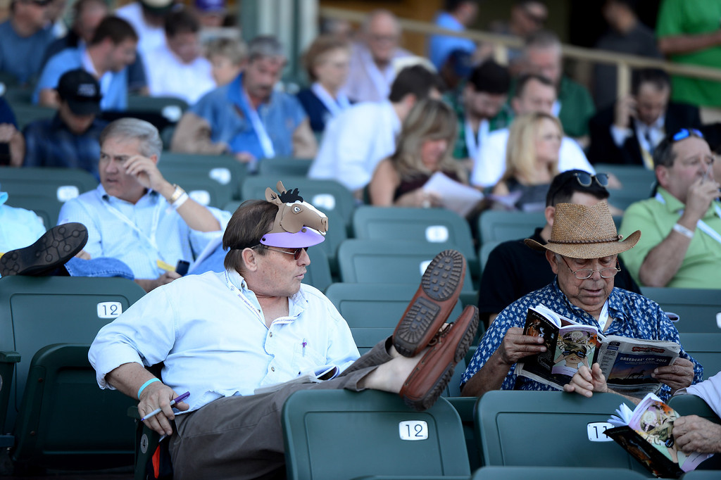 . People watch a race at the Breeders\' Cup at Santa Anita Park in Arcadia Friday, November 1, 2013. (Photo by Sarah Reingewirtz/Pasadena Star-News)