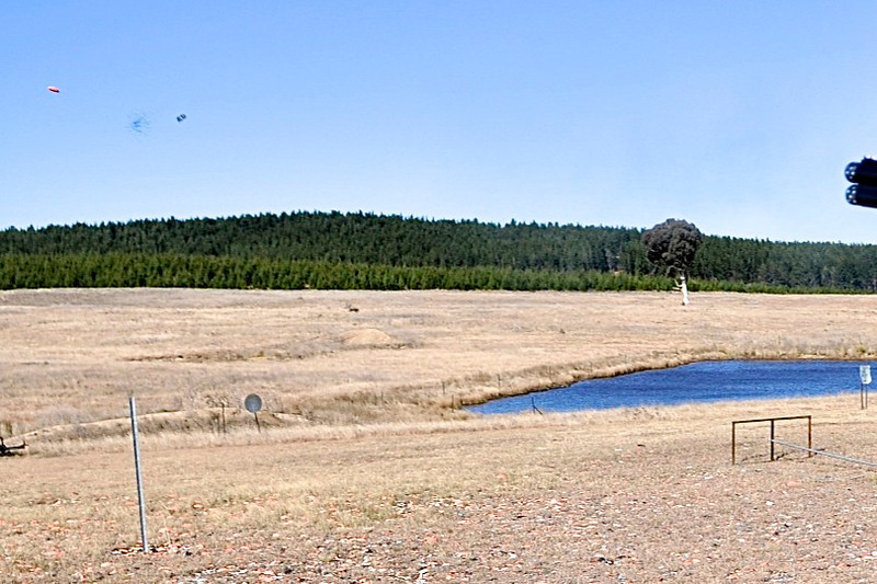 Shotgun Clay target, trap shooting