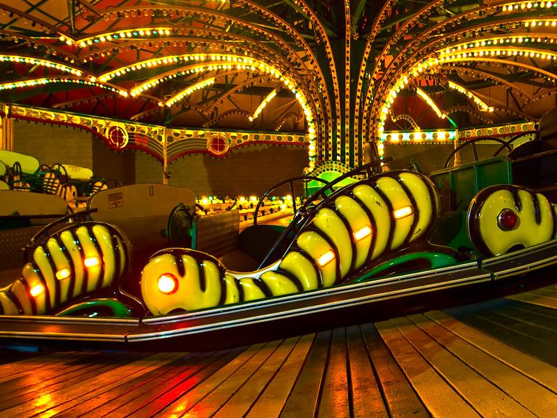 Caterpillars_Resting.jpg