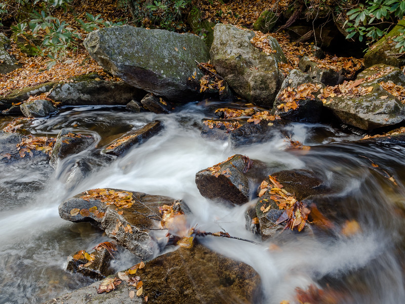 36 Oct 23 Pisgah Forest stream (1 of 1).jpg