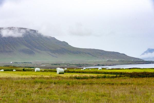 2105 Island Agrar
