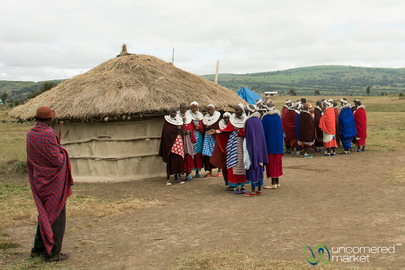Maasai Women Gather Around Huts - Circumcision Party, Tanzania