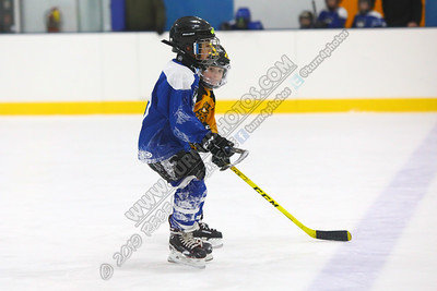 02/16/20 Watertown 1 vs Canton -BLUE