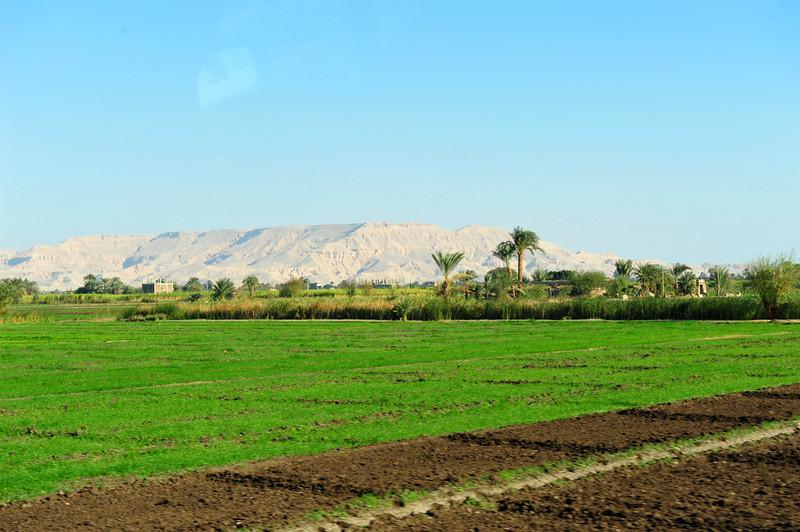 Egypt-181.jpg