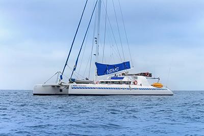 01-large-sail-catamaran-nemo-i
