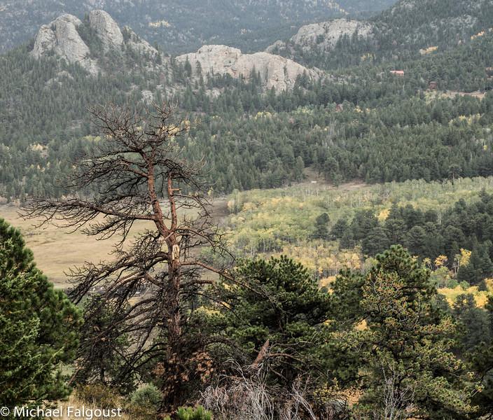Colorado_Fall-81.jpg