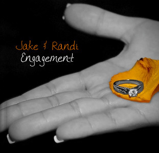 Engagement Albums