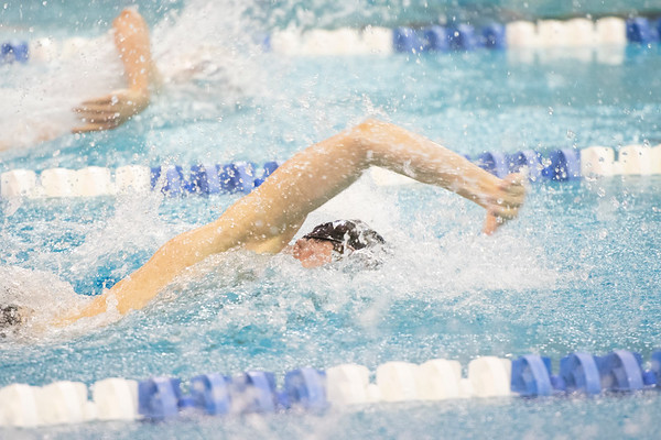 North/South Forsyth State Swimming
